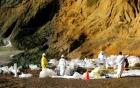 В бухте Сан-Франциско объявлен режим чрезвычайной ситуации