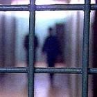 Тагильские насильники получат заслуженное наказание