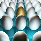 Яйца и подсолнечное масло – лидеры по росту цен