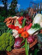 Весенние капуста, картофель и чеснок опасны!