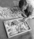 Возраст марокканских украшений - 85 тысяч лет