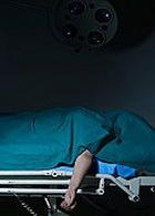 Новая скорая помощь будет спасать органы для трансплантации