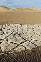 Изменение климата стало фобией