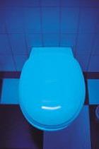 Туалет как значимое изобретение обогнал ТВ и телефон