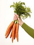 Экологически чистые продукты: переплачиваем только за название