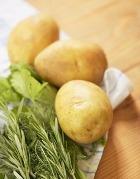 Картофель поможет найти средство для лечения болезни Альцгеймера