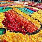 В Токио открылся фестиваль цветов