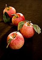 Яблоки омолаживают организм на 17 лет