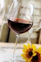 Знакомство с красным вином ведёт к долголетию