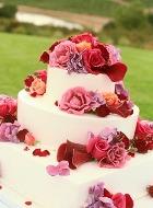 Миллион бисквитных алых роз для Аллы Пугачёвой