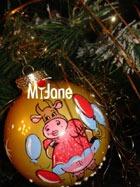 Волшебного Нового года всем читательницам MyJane.ru!!!