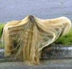 Одежда... из женских волос?