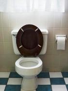 Рестораны в «туалетном» стиле становятся всё популярнее