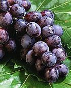 Виноград поможет сердцу