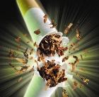 В России продолжается борьба с курением