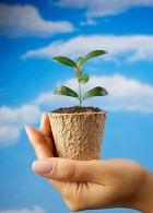 Голос хозяина для растений - бальзам на душу