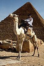 Цены на отдых в Египте падают с каждым днем