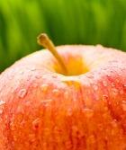 Яблоко яблоку - рознь