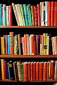 Россияне назвали свои любимые книги
