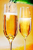 Ученые раскрыли тайну шампанского