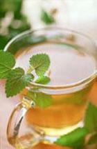 Мятный чай заменит любое болеутоляющее
