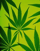 Какая музыка способствует распространению наркомании