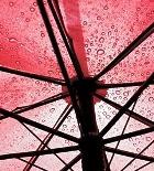 Встречать Новый год москвичам придётся под дождём
