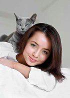 Заводчики кошек образованней любителей собак!