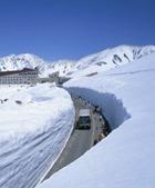 В Австрии с высоты 5 метров рухнул туристический автобус