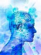 Интеллектуальные компьютерные игры не развивают мозг!
