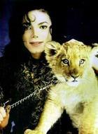 Начался суд над врачом Майкла Джексона