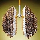 Учёные: рак не заставит бросить сигарету