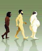 Куда нас заведёт дорога эволюции?