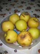 Ученые выяснили, на сколько молодят яблоки