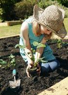 Забота о растениях полезна для здоровья костей