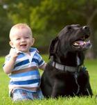 Кому показано держать собак?