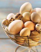 Употребление яиц бодрит