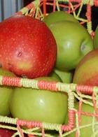 Два яблока в день предотвратят инсульт и инфаркт