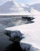 Льдам Арктики осталось жить не более десятка лет