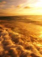 На территории Эфиопии образуется новый океан