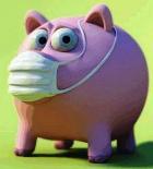 Землян опять пугают свиным гриппом