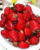 Концентрированный порошок заменит овощи и фрукты