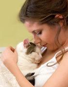 Наличие кошки в доме не повышает риск развития рака мозга