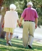 Учёные доказали существование вечной любви