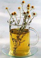 Чай из ромашки  защитит от рака