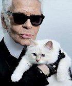 Карл Лагерфельд хочет взять в жёны свою кошку