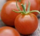 """Соленые помидоры """"Как из бочки"""""""