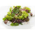 Салат из куриной печени с красным луком