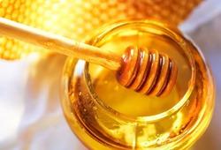 Учёными доказано, что кариес боится мёда