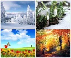 Что такое цветотип?